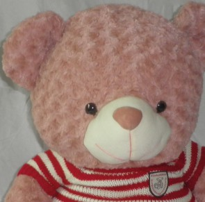 Plush Soft Teddy Bear in Red/White Sweater